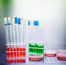 A jövő kémikusai versenyeztek Békéscsabán